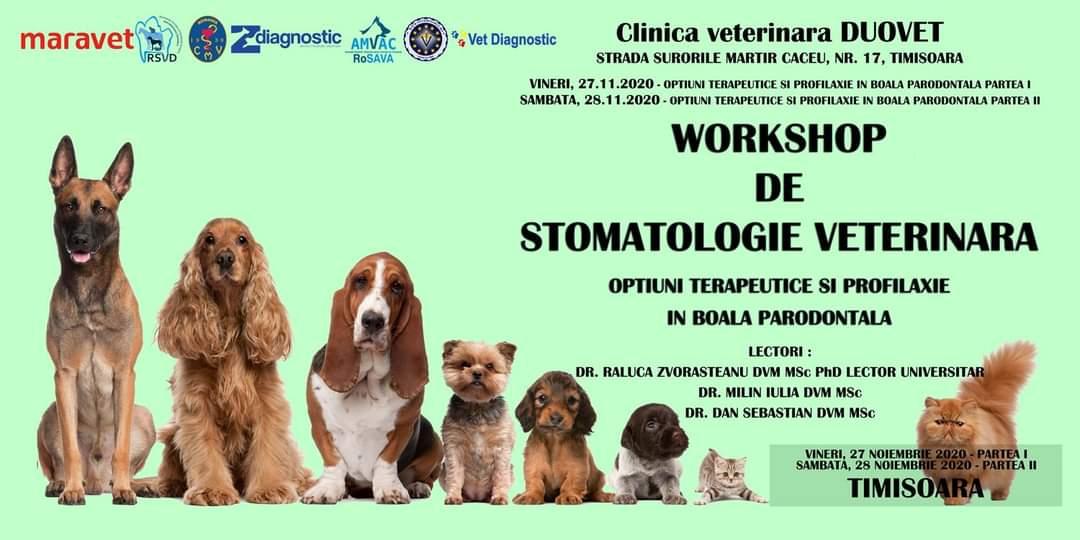 Workshop: Opțiuni terapeutice și profilaxie în boala parodontală