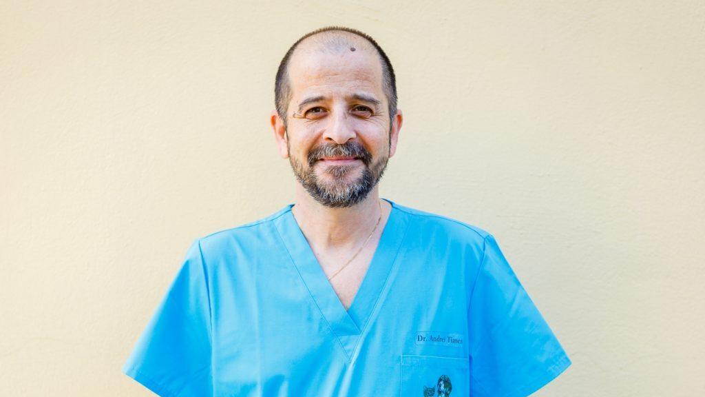 Andrei Timen, Doctor în Medicină Veterinară, Past President AMVAC: Afecțiunile locomotorii la animalele de companie reprezintă aproximativ 20% din patologia acestora