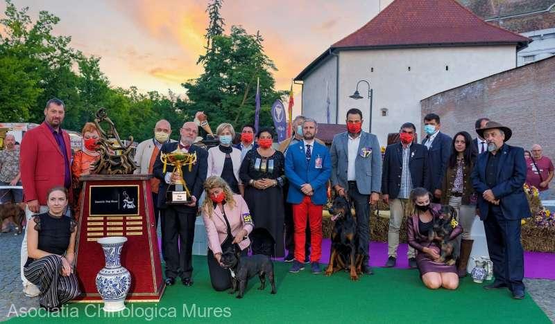 """Peste 700 de câini din 28 de ţări, la expoziţiile canine """"Dracula Dog Show"""" de la Târgu Mureş"""